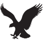 American Eagle Outfitters, Inc (AEO)